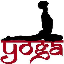 sanskrit challenge 2  yoga pose names